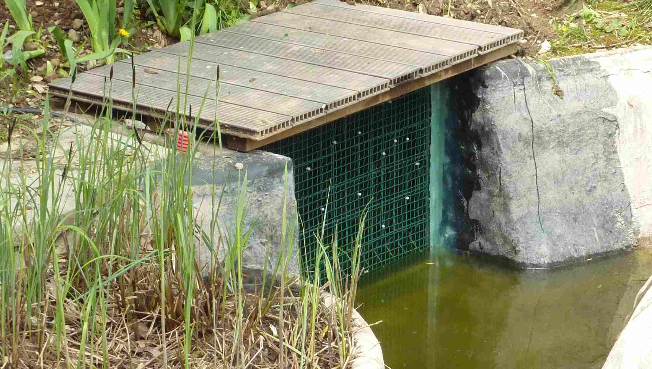 realiser des bassins et des piscines naturelles avec des pompes solaires un r ve. Black Bedroom Furniture Sets. Home Design Ideas
